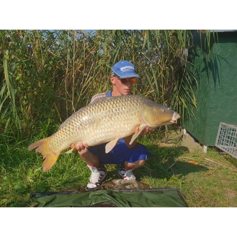 18,20 kg big carp