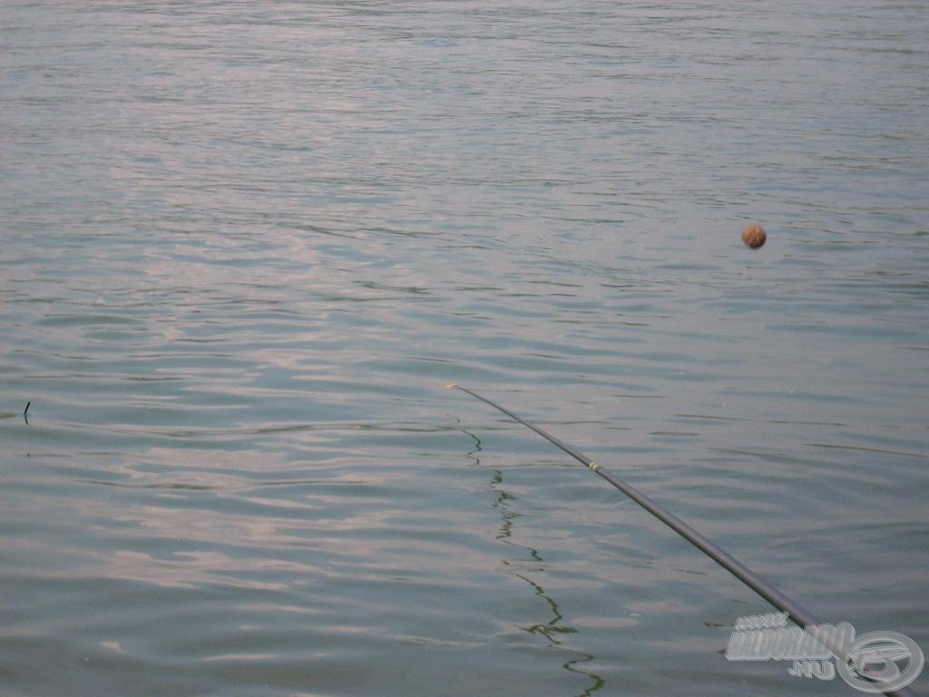 10 másodperccel később ott már nem volt úszó