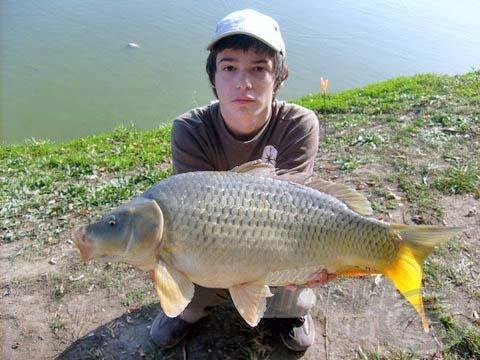 A nap legnagyobb hala - eddigi legnagyobb pontyom