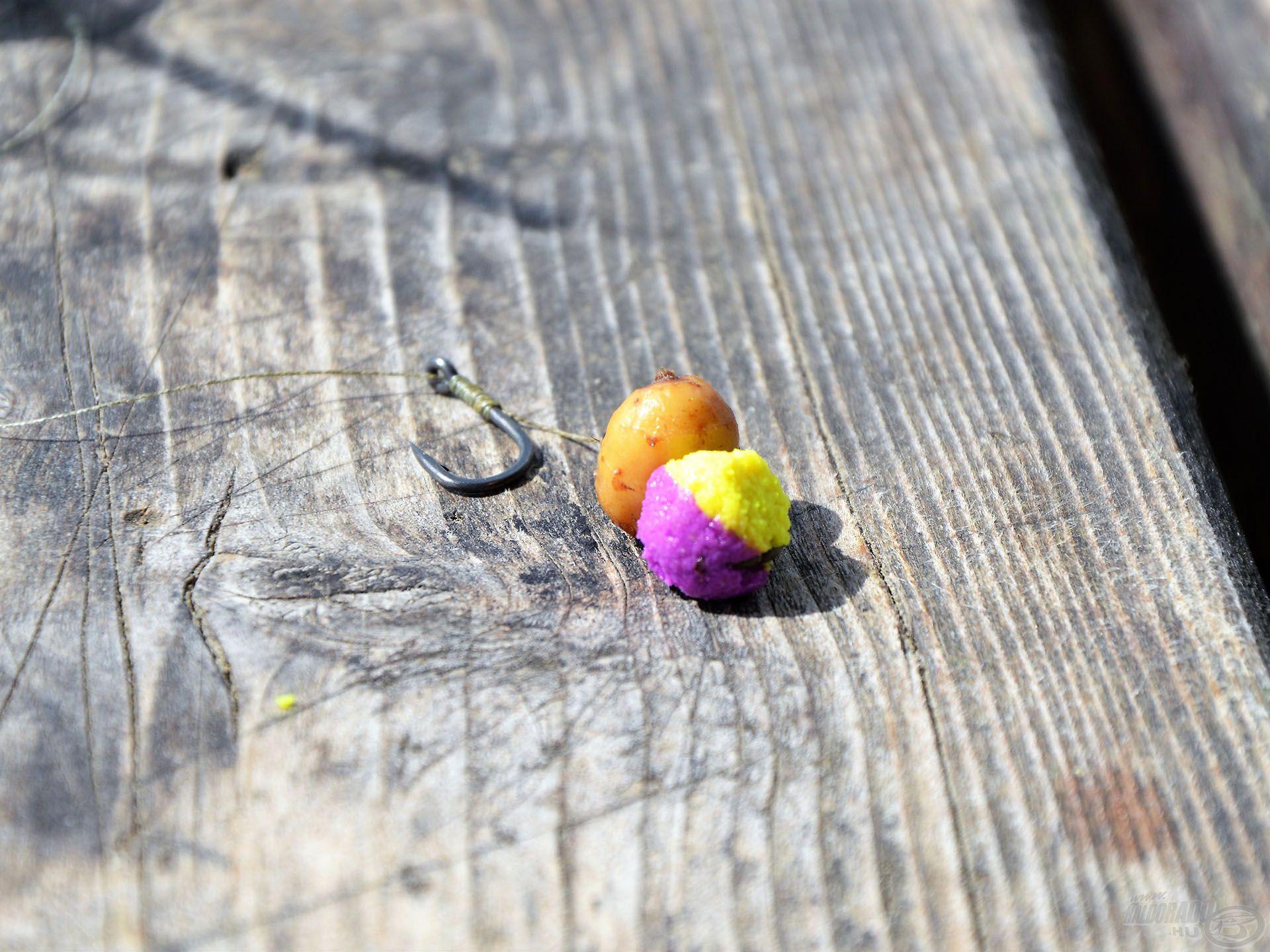 Törpeharcsák ellen is jó alternatíva a kemény, termetes csali. A BlendeX Pop Up csalin jól látható a törpék áldásos tevékenysége