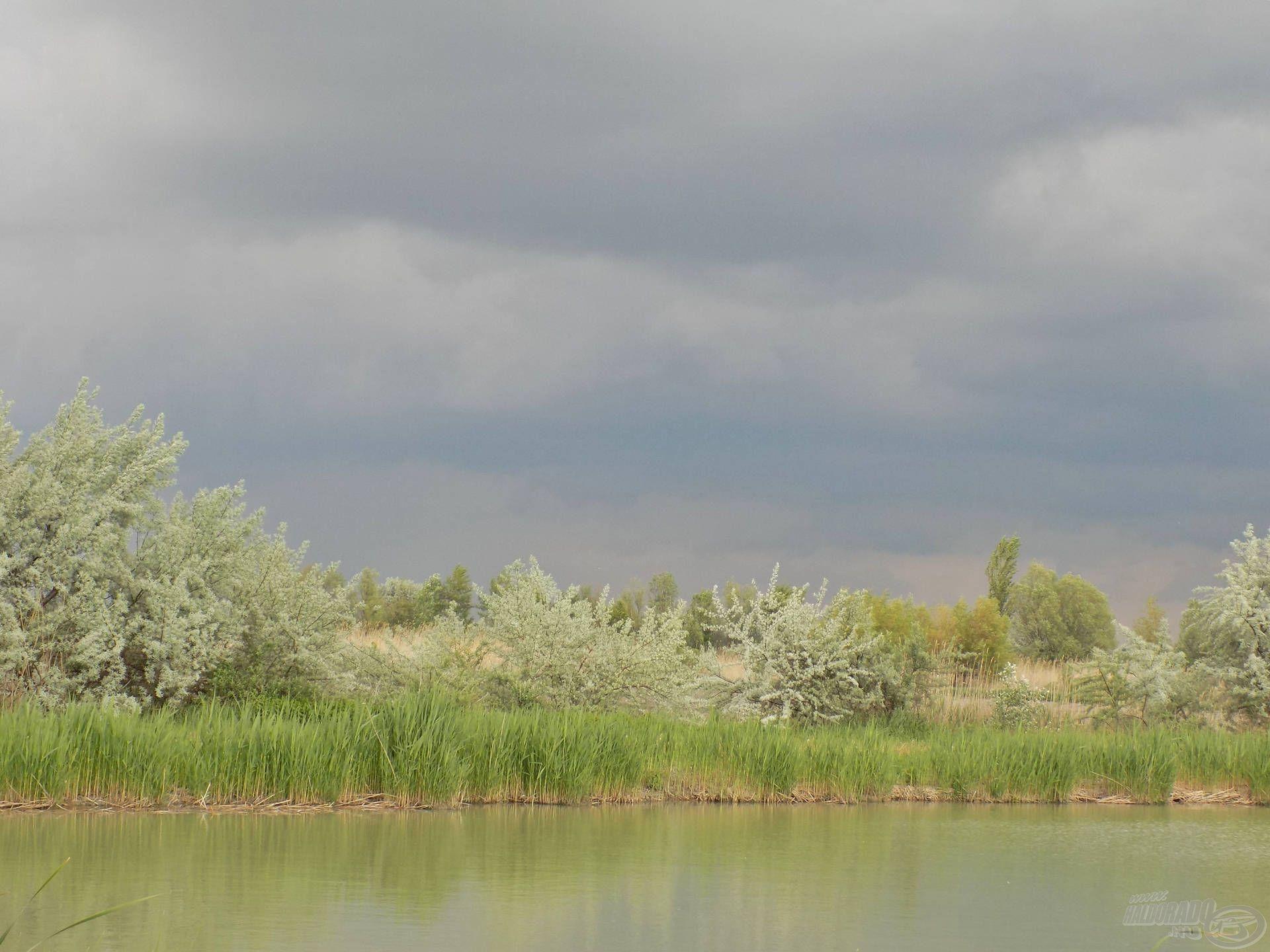A horgászat során szám szerint hat alkalommal kezdett rá az eső, ha éppen nem esett, akkor fülledt meleg pecsételte meg a halak étvágyát