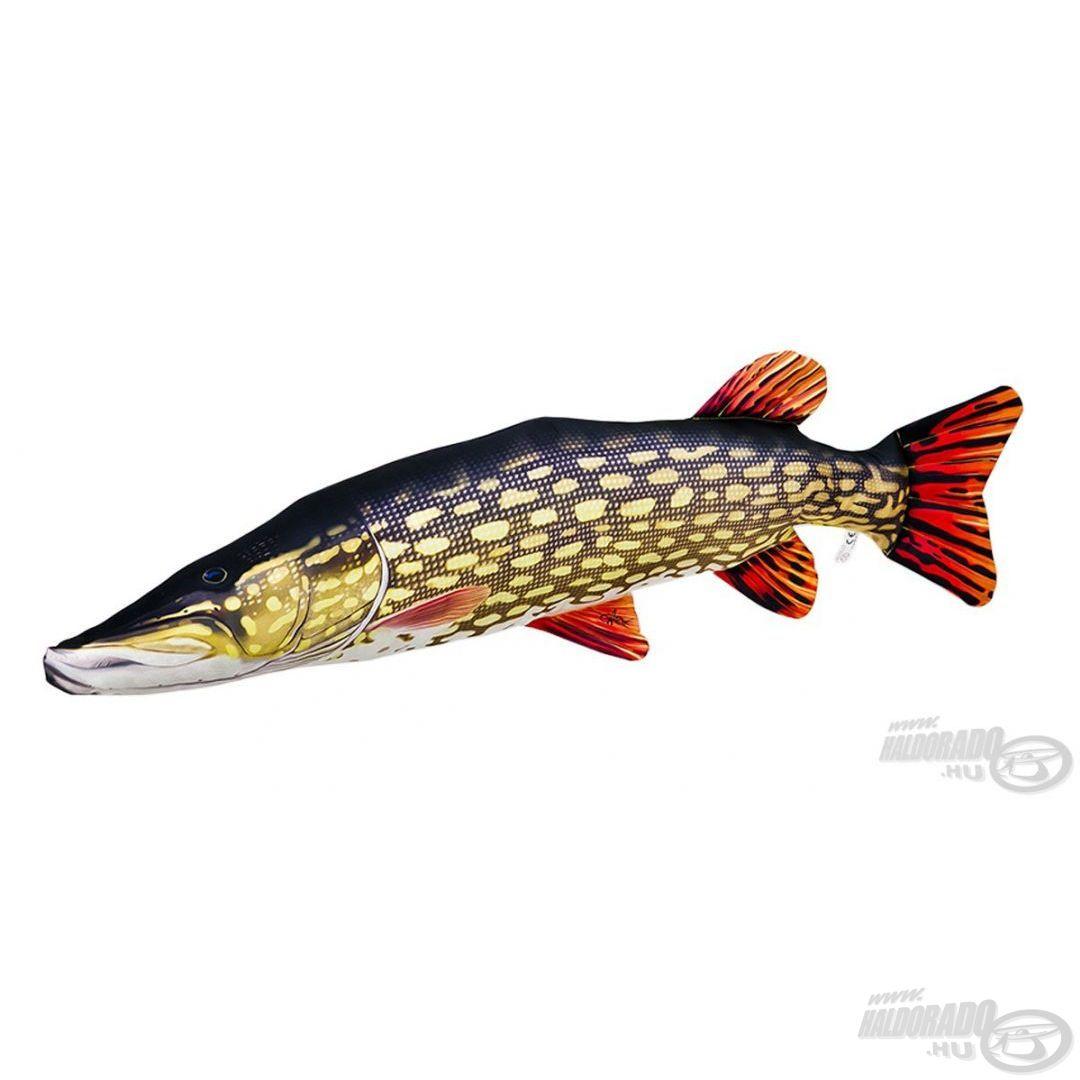 Minden ragadozóhalas horgász álomhala egy ekkora méretű óriás csuka, 110 cm-es méretével már egy kisebb krokodilra emlékeztet