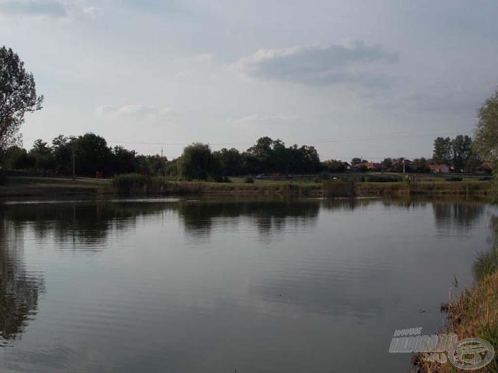 A Holt-Tisza partja