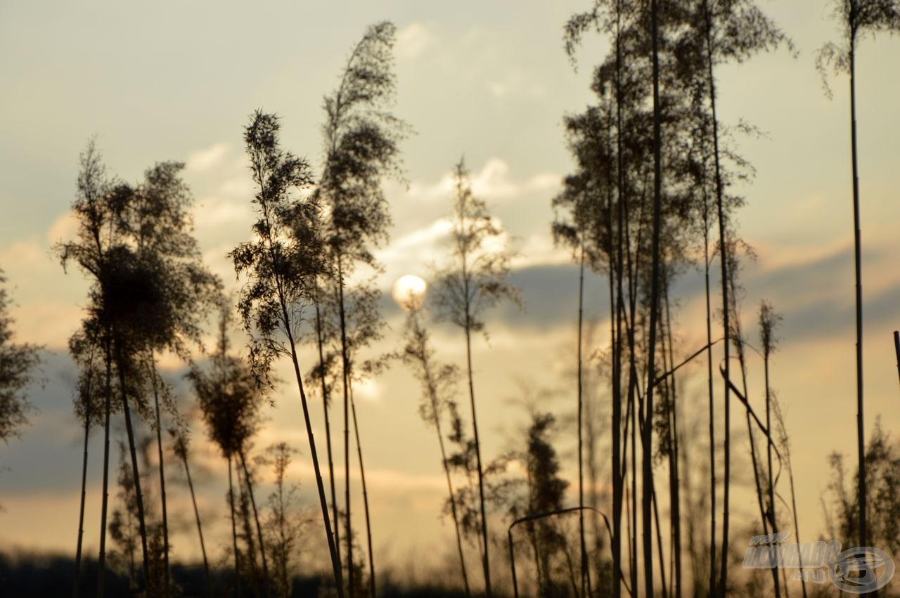Sajnos még korán lemegy a nap, de szép lassan azért csak hosszabbodnak a nappalok