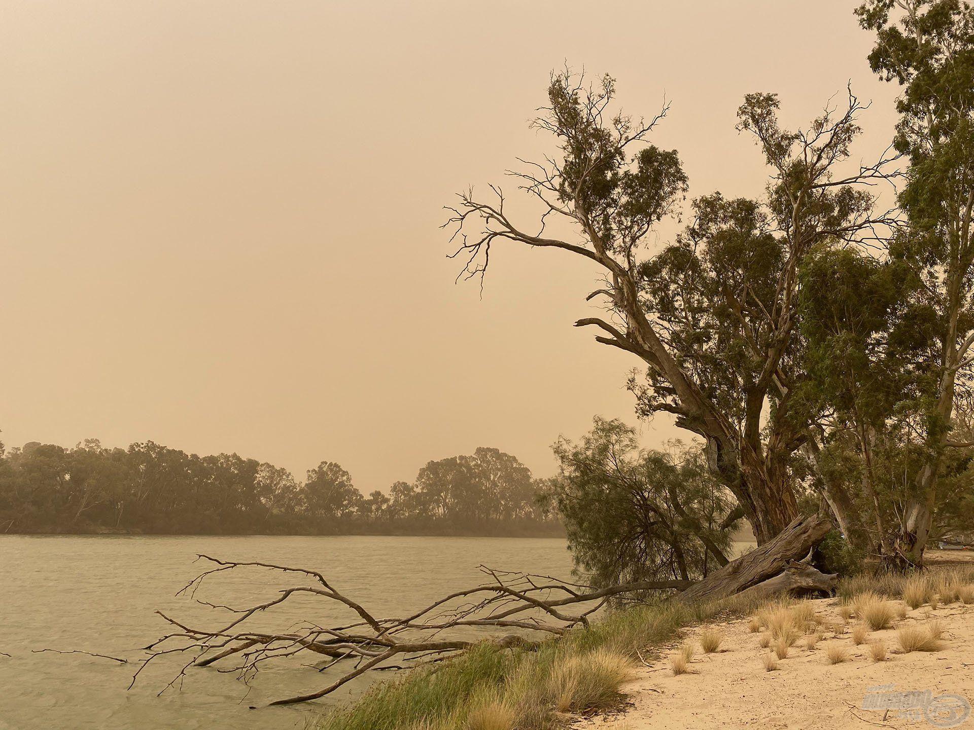 A viharos szél hatalmas homokvihart zúdított a nyakunkba, így korábban be kellett fejezni a horgászatot