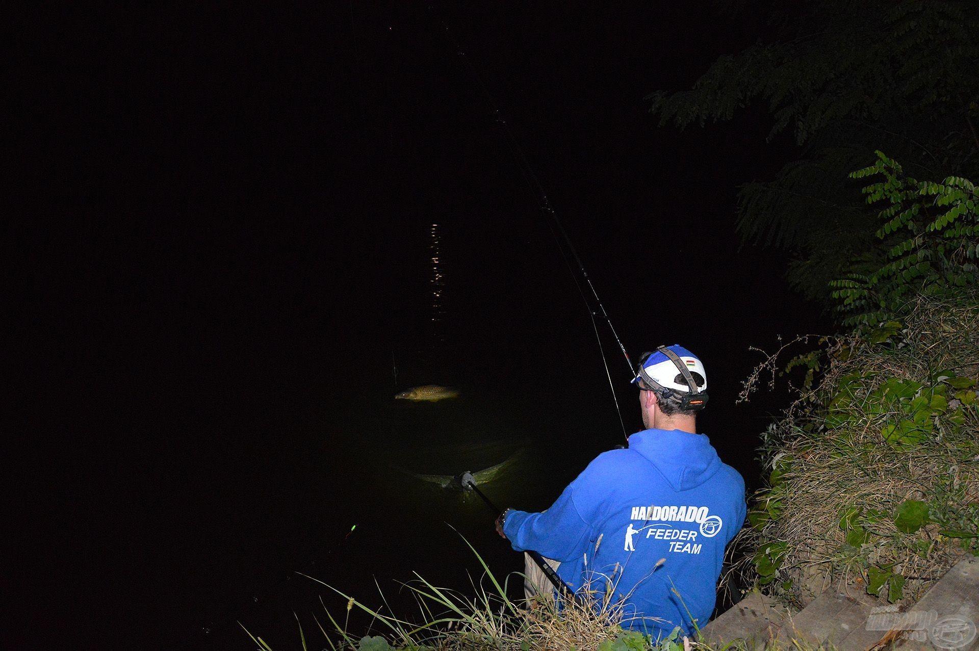 Az éjszakai horgászatok alapkelléke egy jó fejlámpa!