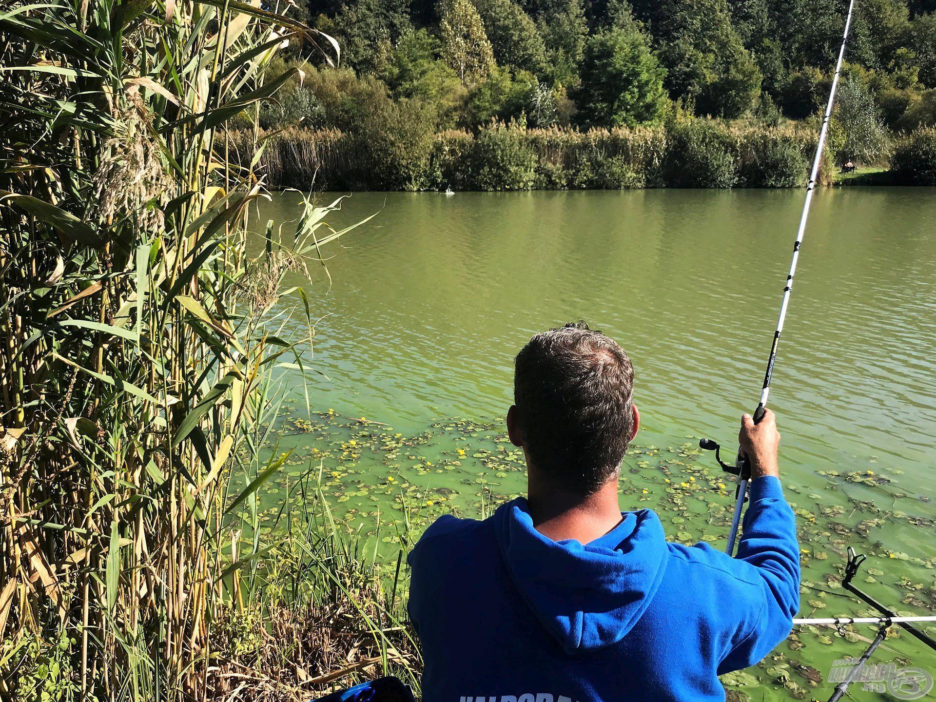 Olyan tavakon, ahol a szemközti oldalon nem lehet horgászni, szinte biztos, hogy a halak oda menekülnek a csapkodás elől