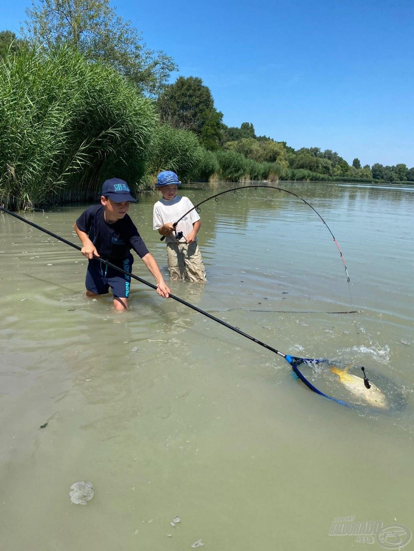 Amit egy kezdő, gyermek feeder felszerelésnél figyelembe kell venni, hogy az összeállítás ne legyen túlságosan nehéz és hosszú, mert nem tudnának rendesen mozogni, horgászni vele!