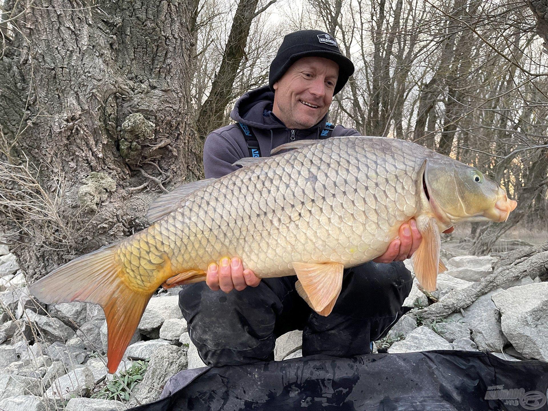 Hatalmas öröm ilyen szép halakat fogni a Dunából