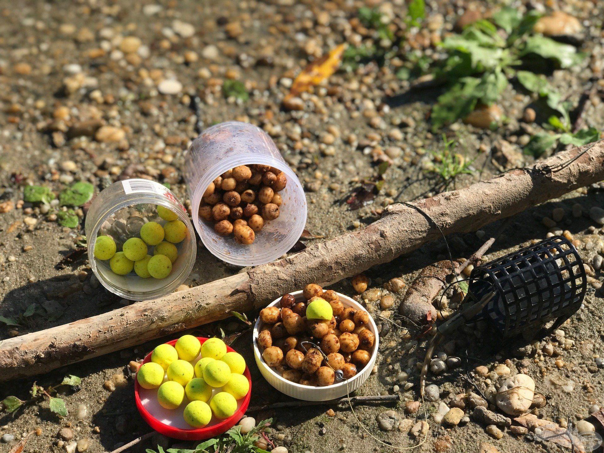 A tigrismogyoró egy ananászos pop-up csalival könnyítve klasszikus amurcsali
