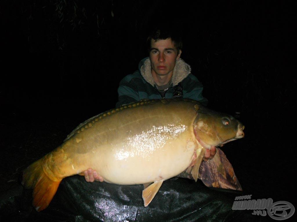 15,50kg; Full Liver