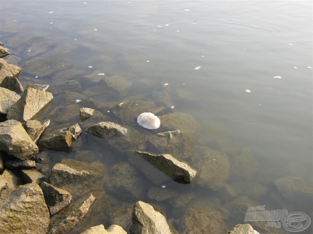 … ha ez a hab megjelent, nem fogtam halat… Vajon honnan jöhet ez a mocsok?