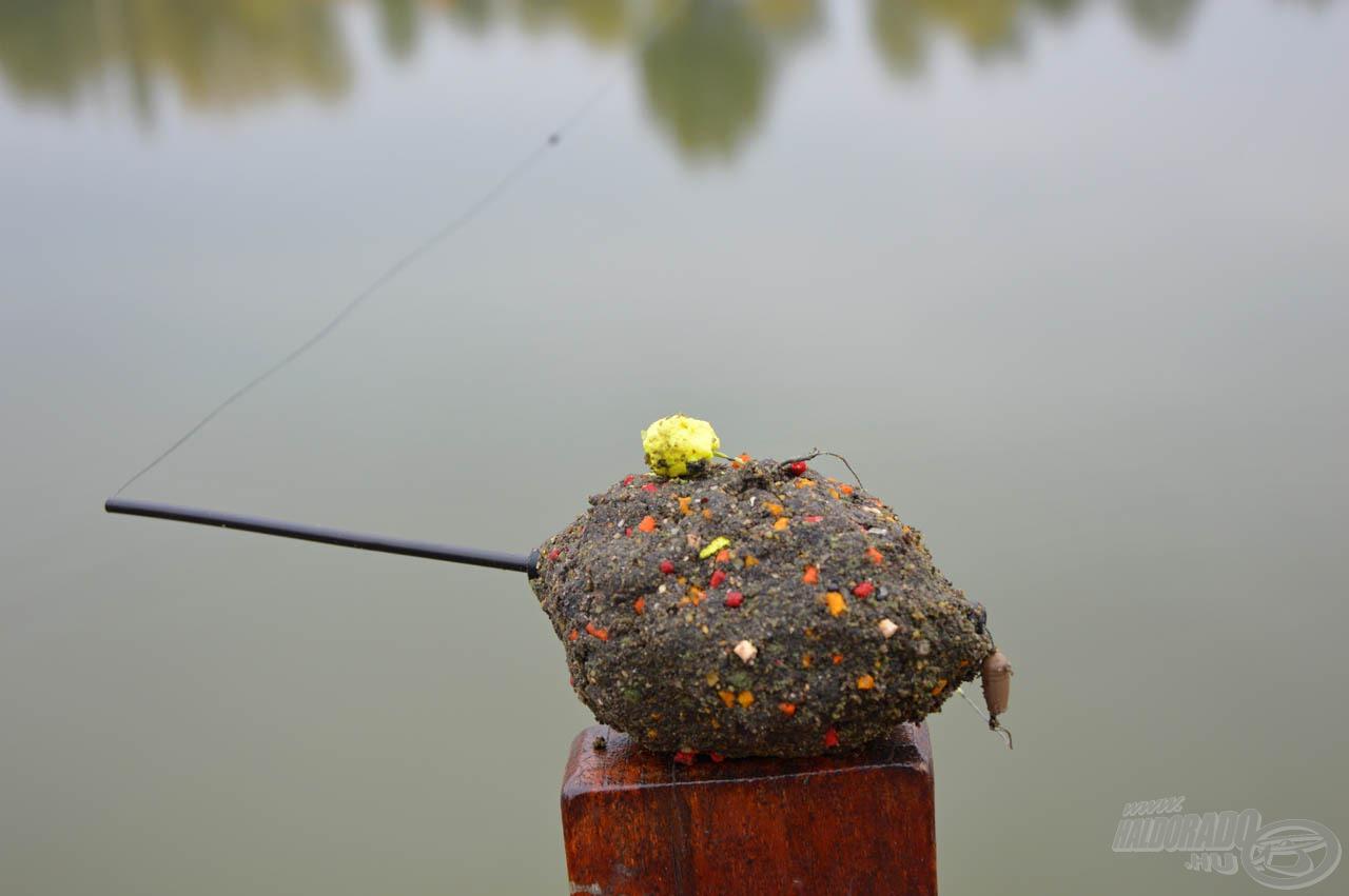 Ebben aztán tud válogatni a hal!