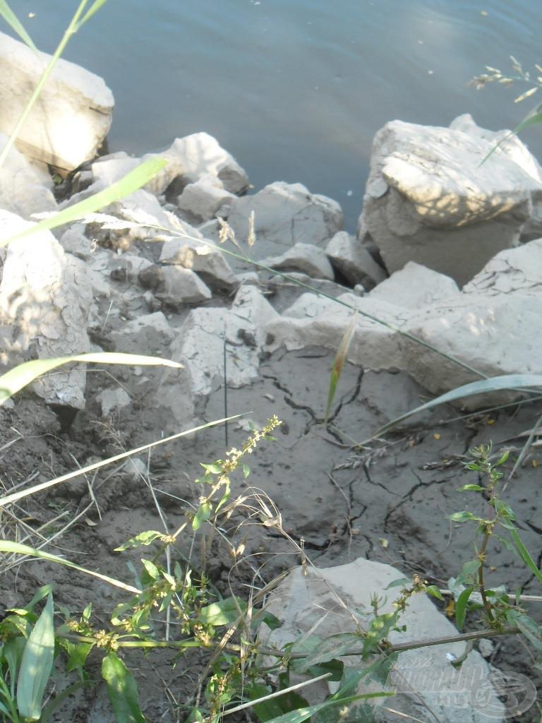 Horgászhelyemet a Rába eddig víz alatt lévő kövezett partján alakítottam ki