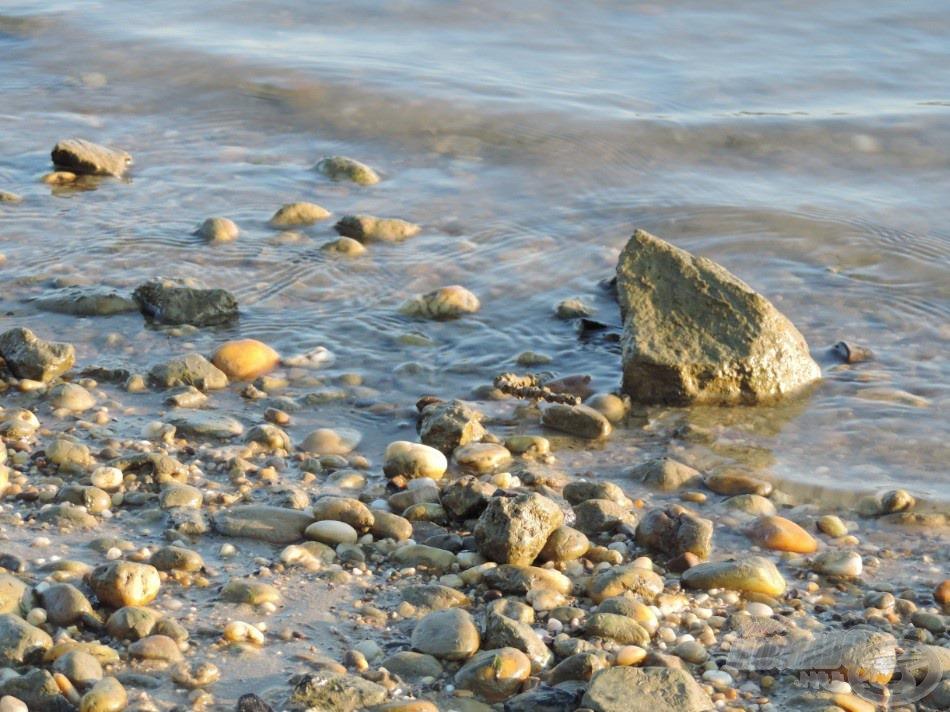 Nem könnyű terep, sok nagyobb kő és…
