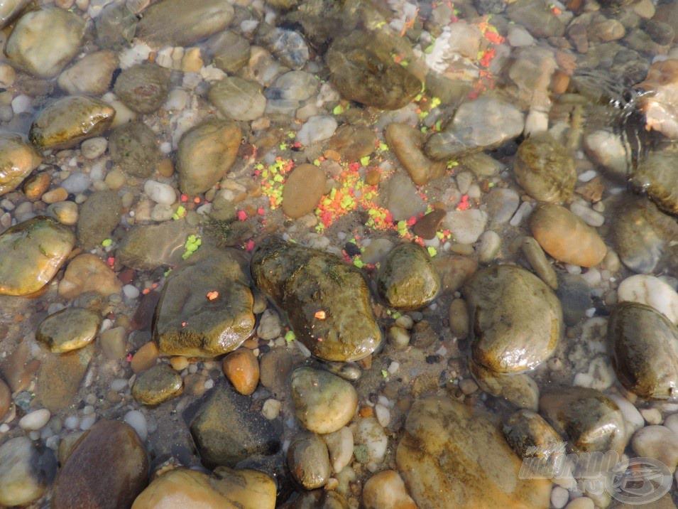 A fluo morzsa rendkívül jól látható a kavicsok között, a halak figyelmét sem fogja elkerülni