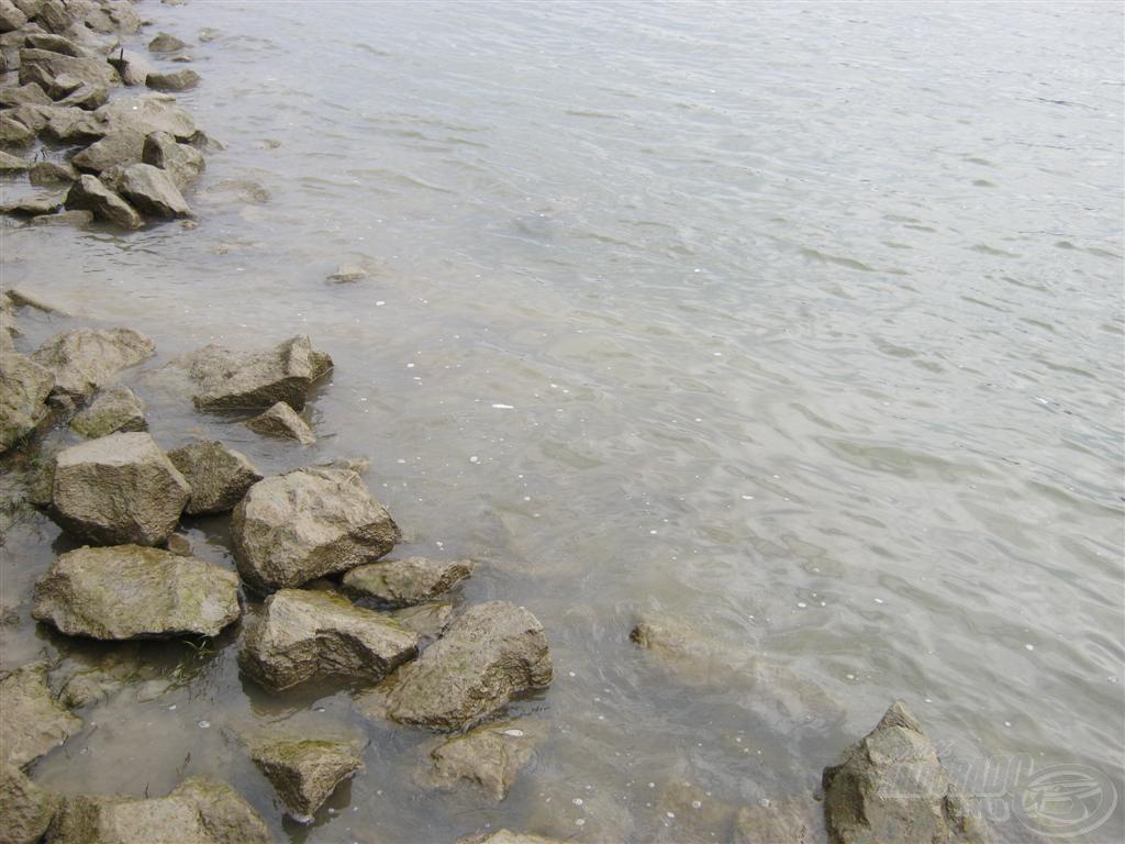 Sokszor tapasztalok ilyen habzást a folyón. A hídról nézve ez ellepi a folyót teljes széltében. Azt nem állíthatom, hogy huszonnégy órán keresztül folyik, hiszen nem a Duna-parton élek. De felettébb különösnek találom azt, hogy ha ez a hab megjelenik, akkor nincs márnás fotó azon a napon