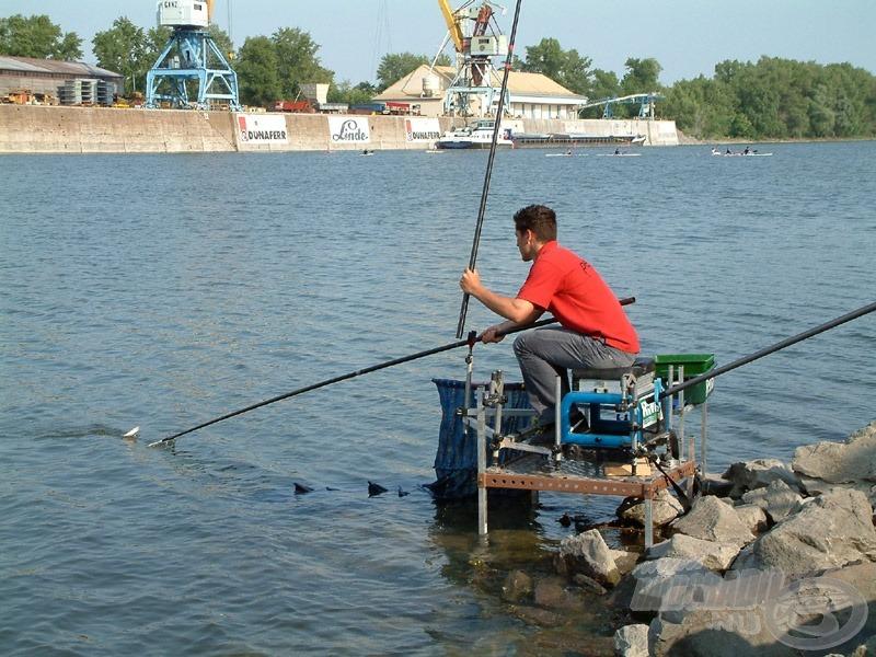 Szinte minden halat szákolni kellett, hiszen aprócska alig akadt horogra