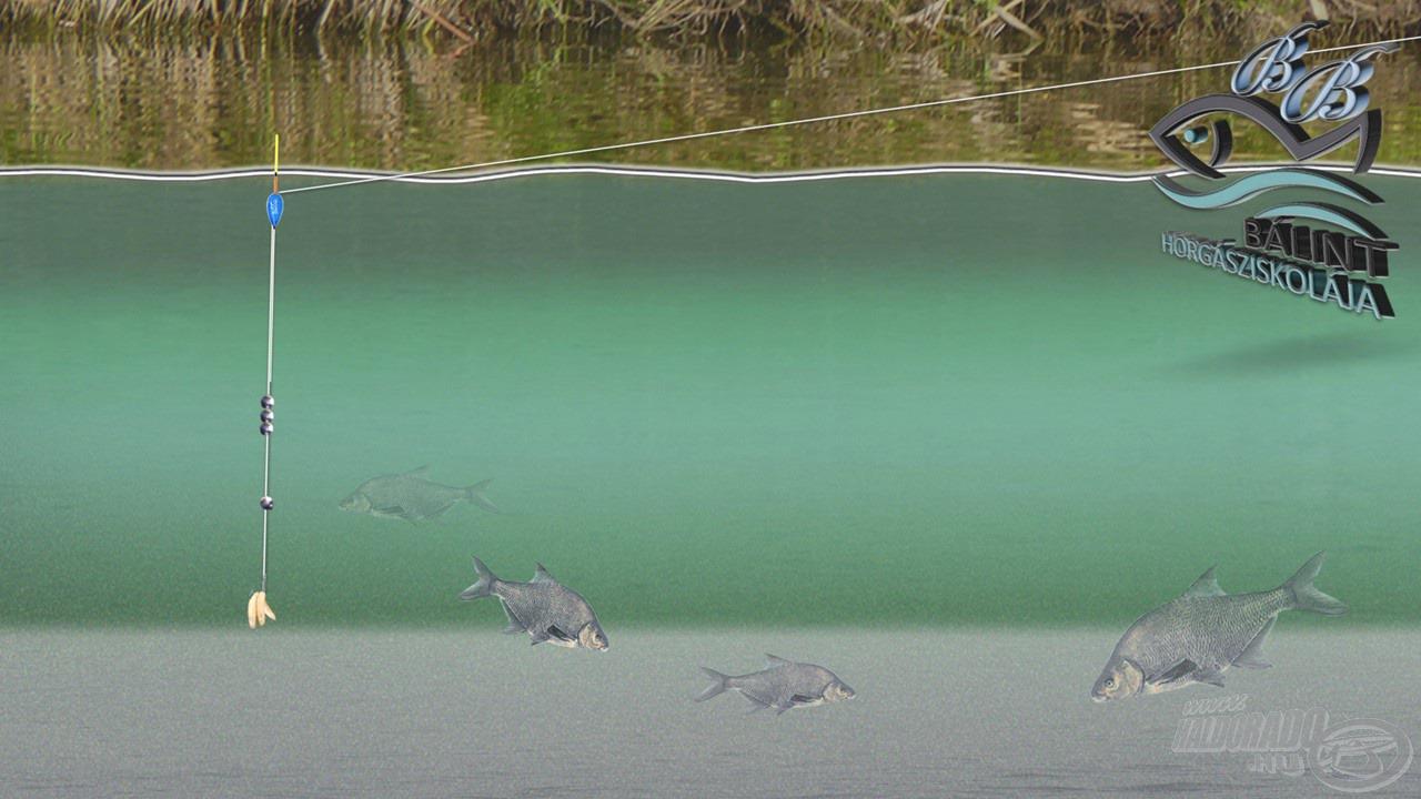 Amennyiben még kisebb eresztéket állítunk, a vízközti halakra lehet hatékonyan horgászni. Ilyen a küsz (sneci), a karikakeszeg, a vörösszárnyú keszeg