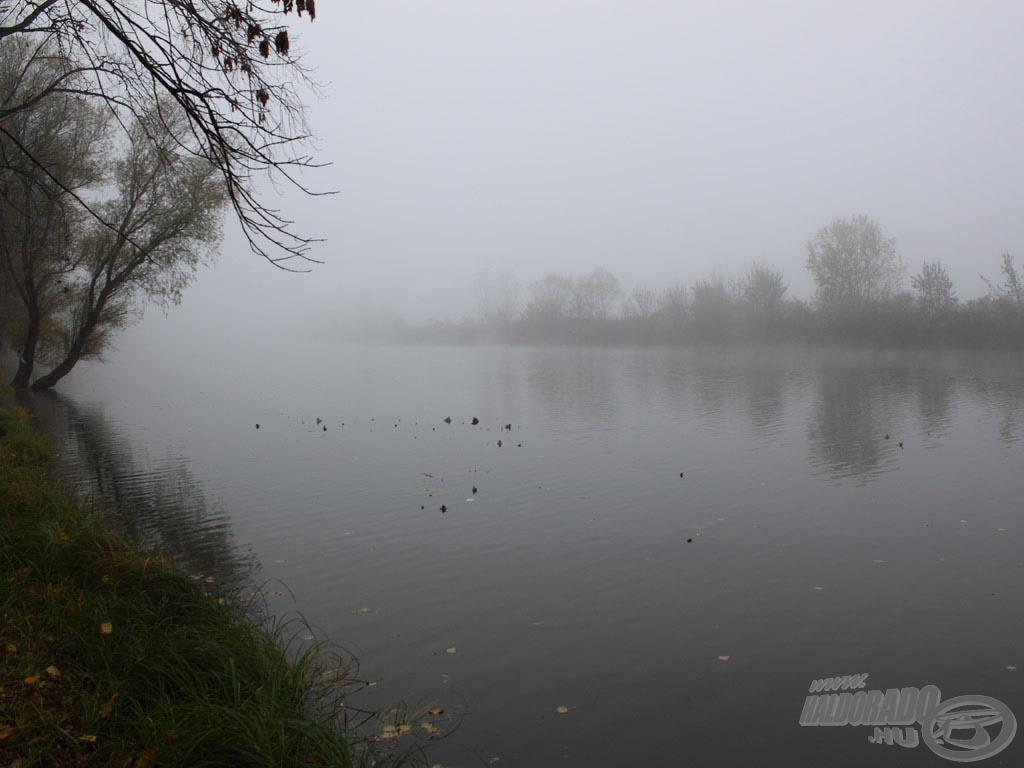 Hirtelen ereszkedett ránk a köd, a szürkeség…
