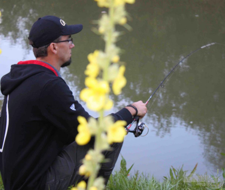 Guggolva nem túl kényelmes pergetni, de lehet, több halat be tudunk csapni