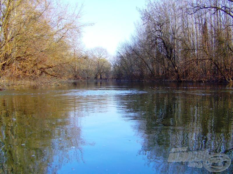 A kifolyótól balra a Bodrog felé húz a víz