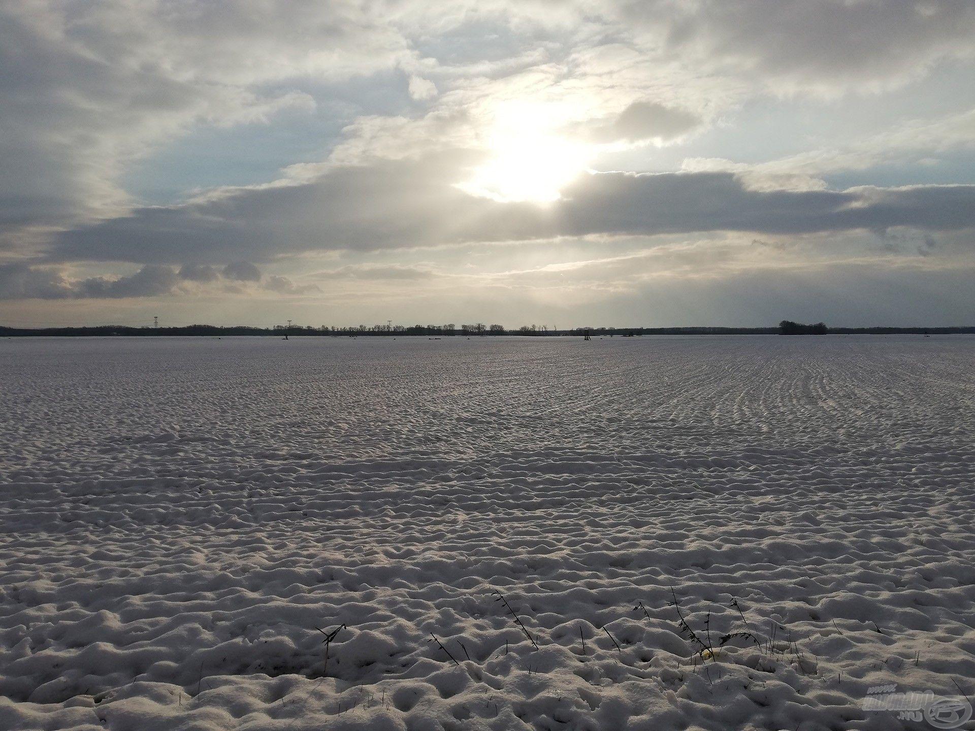 Vakító a hó, akácerdőn hósapka. Ágon jégcsapok. Nincs ott sem madárfészek, fák is tavaszt remélnek
