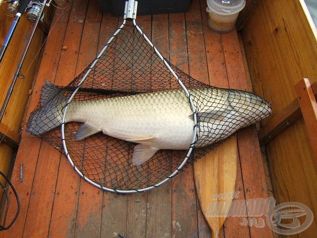 A csónakom alja 120 cm széles