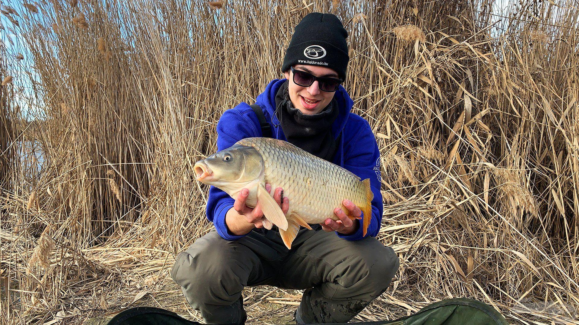 Újabb szép hal a matracon
