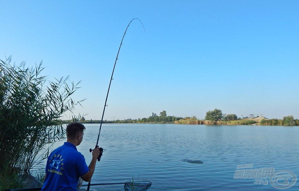 A siker már csak száknyújtásnyira van… mindig fárasszunk türelemmel, kíméletesen, gondoljunk a halak épségére!