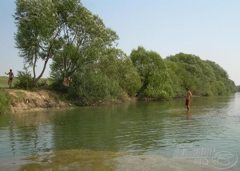 Ahol a srácok ugrálnak, bőven ellepi az embert a víz, ám a folyó közepén már csak bokáig ér
