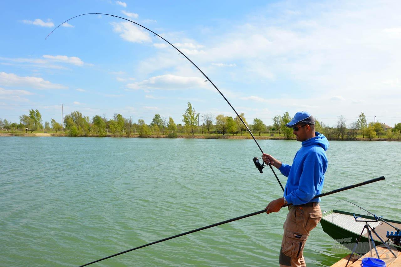 A hal utolsó kirohanásait is jól lereagálja a Gotama Carp Feeder