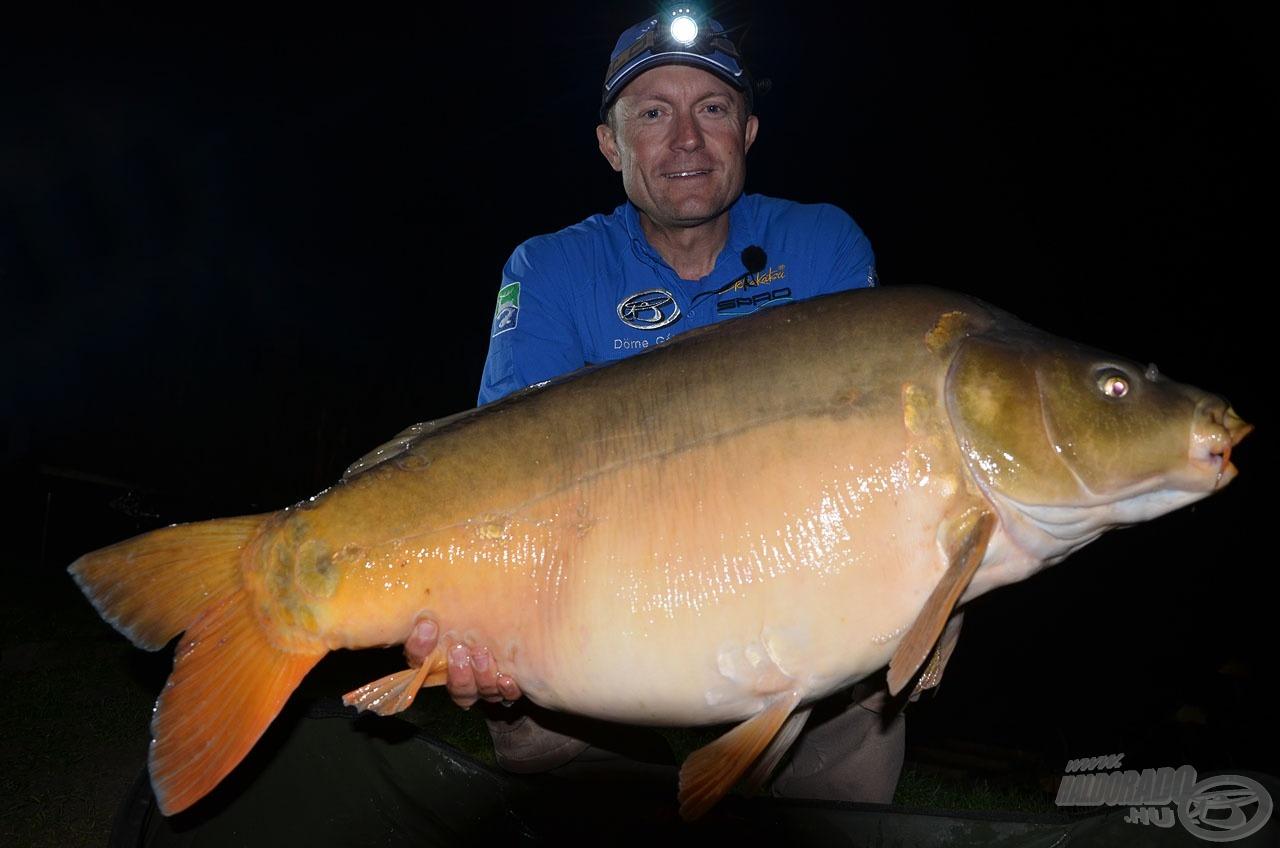 A kitartásomat fokozza, ha ilyen szép halakkal akadok össze a sötét éjszakában. A duci tükrös súlya 4 deka híján 19 kg!