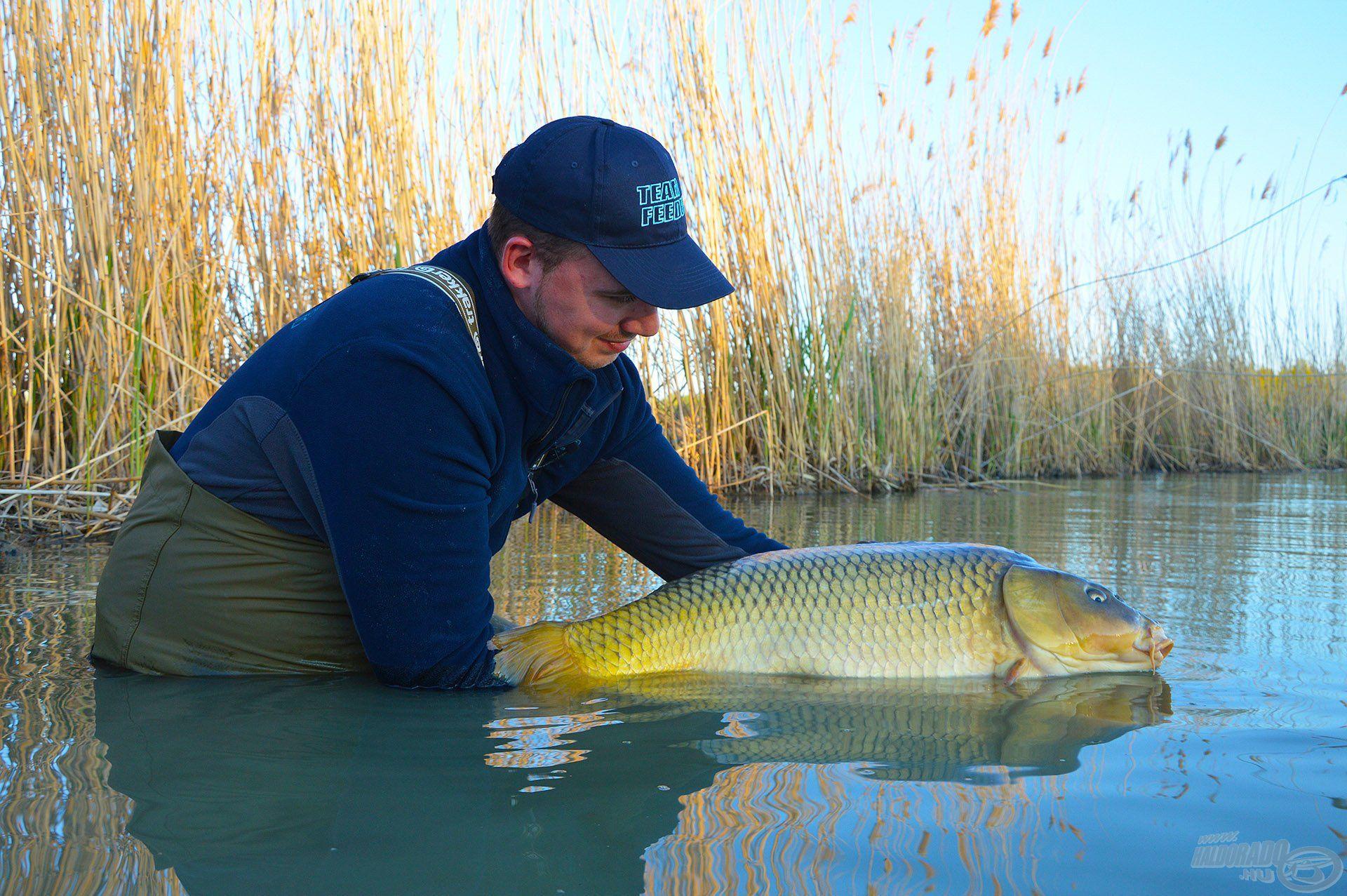 A hal szabadságának visszaadásával válik teljessé az élmény!