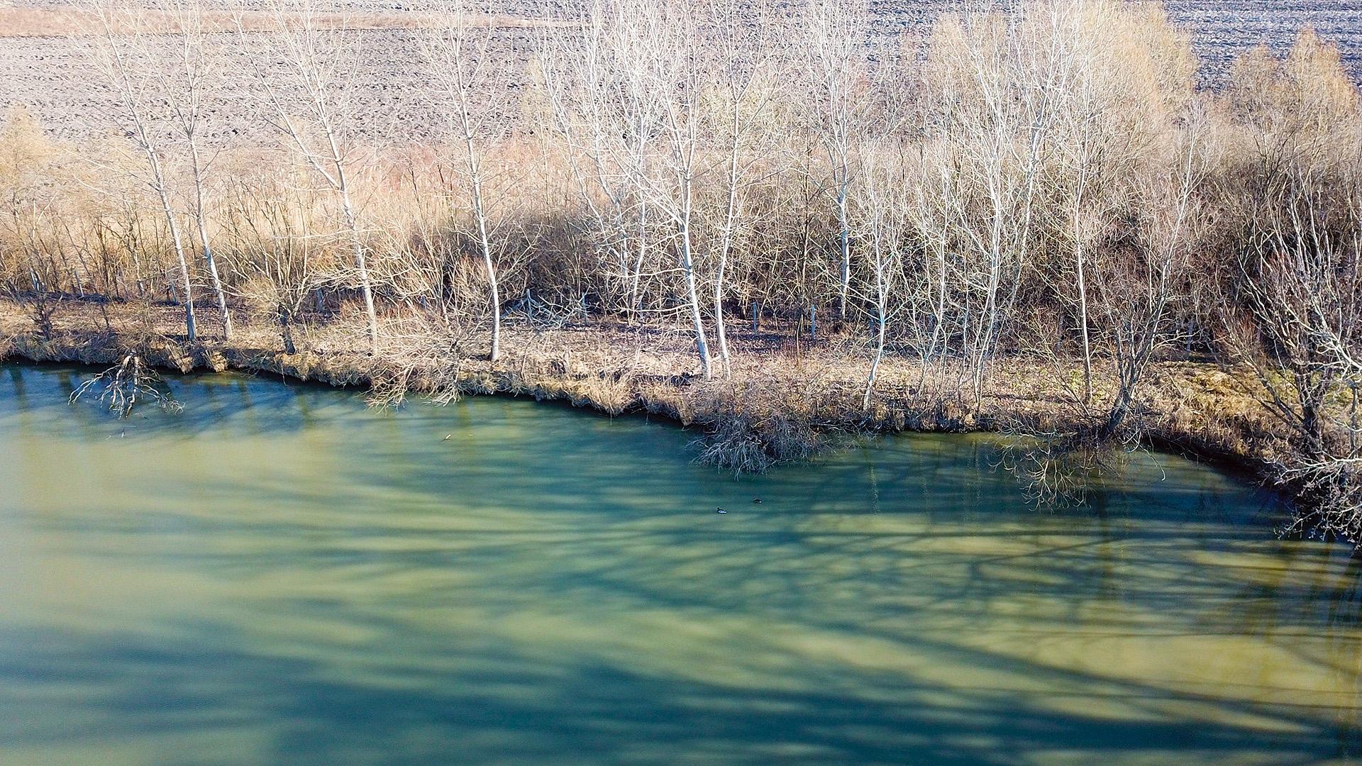 A dobásokat gyakorlatilag bedőlt bokrok, víz fölé hajló fák, akadók elé kell elvégezni