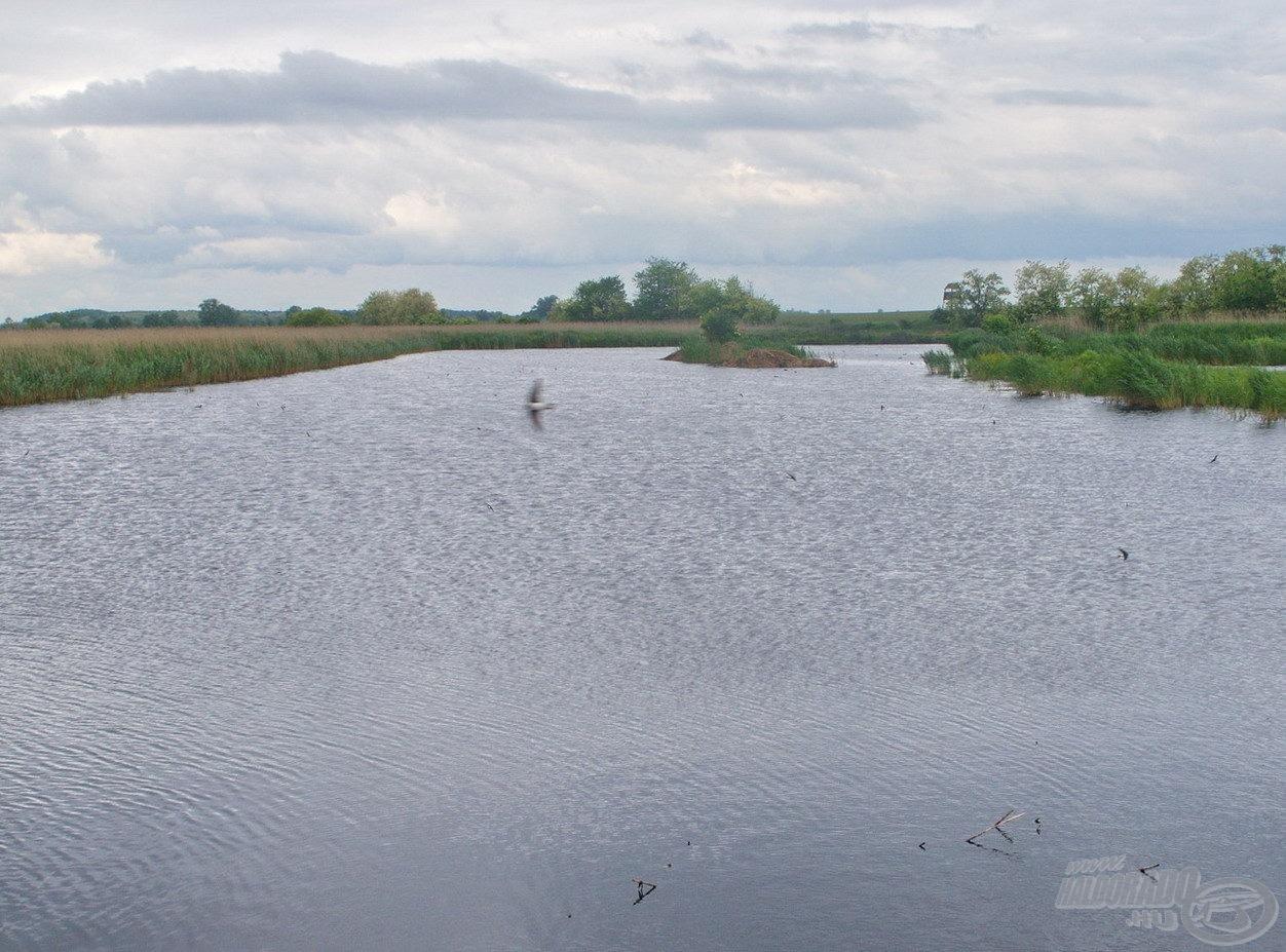 A hátsó tó egy vadregényesebb vízterület, ahol horgászni egyelőre nem lehet