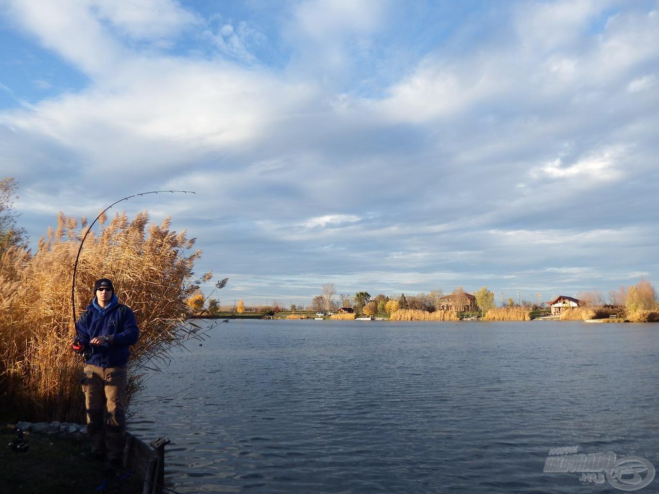 A hideg víz ellenére a megakasztott halak meglepően vehemensen védekeztek