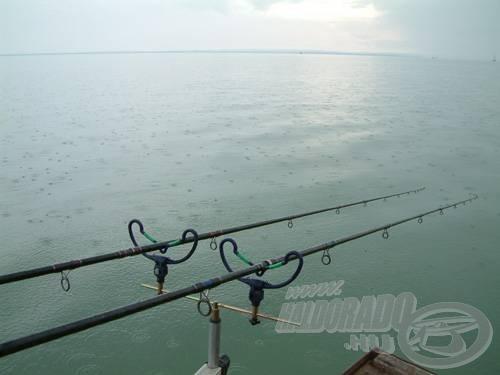 A magyar tenger hatalmas, pont ezért nem könnyű a halakat a horgászhelyünk közelében koncentrálni, és közülük a pontyokat kiválogatni