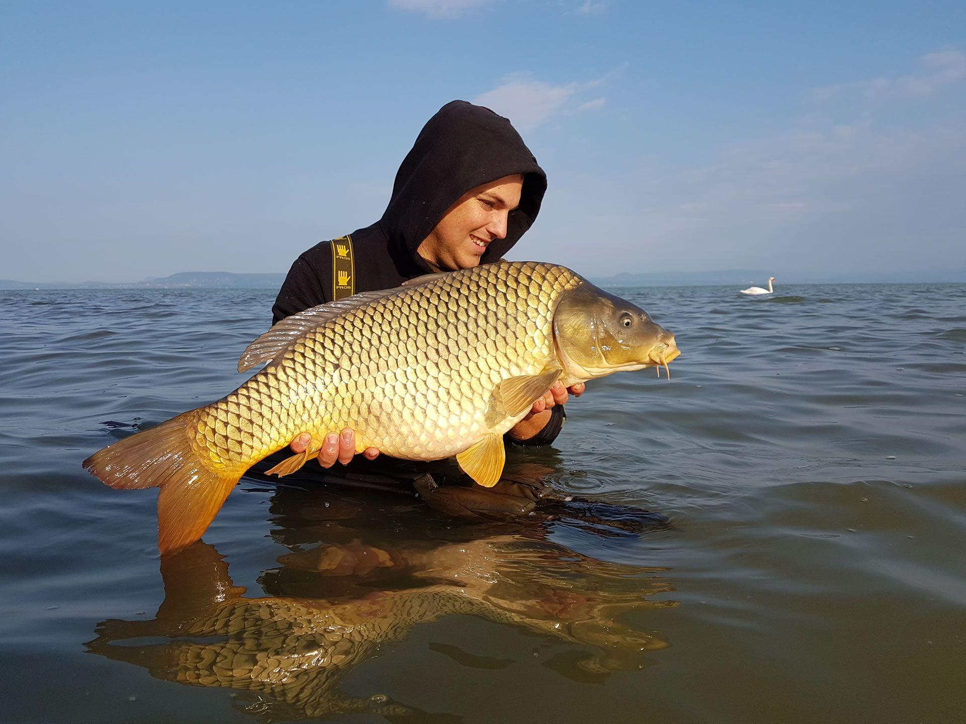 Hihetetlen ennyi szép hal ősszel is…