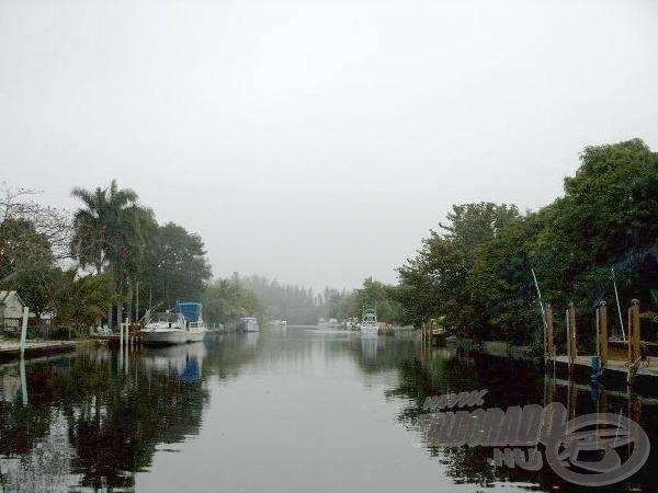 Floridai horgászatok - Hátborzongató kalandok az Everglades mocsárban