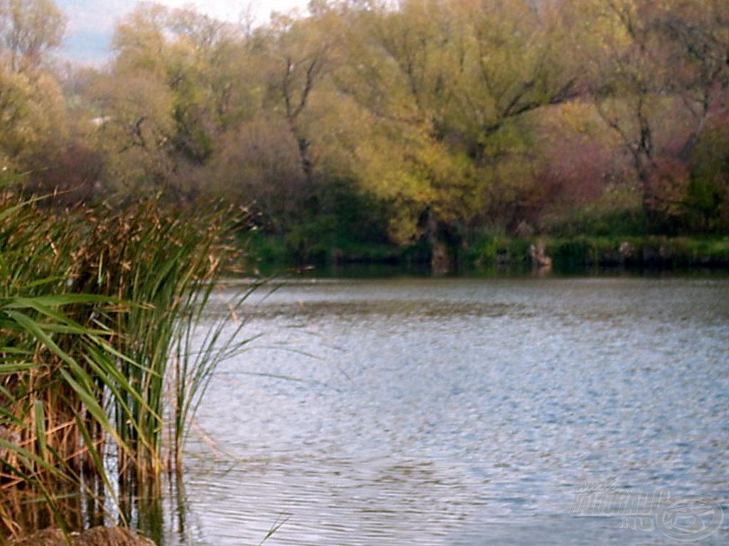 Az egyes tó