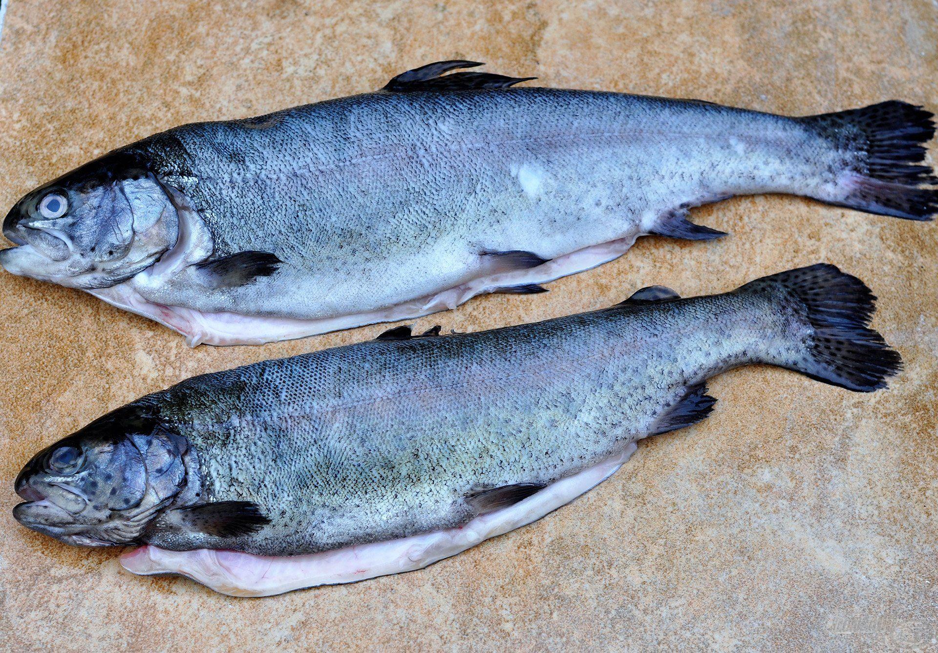 A pikkelyezés és a nyálka eltávolítása során ügyeljünk arra, hogy a bőrben és a halhúsban fizikai roncsolást ne okozzunk