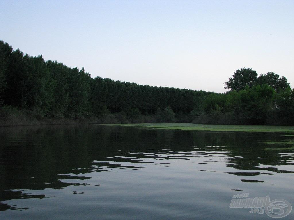 A kis ág mindössze 30-50 méter széles volt és olyan lassan áramlott, hogy inkább hasonlított egy kis csatornához, mint a folyóhoz. Vize meleg volt, ezt mutatja a tetején vastagon úszó zöldalga is