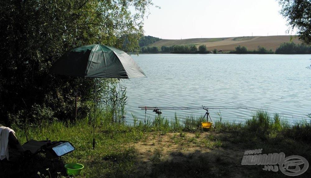 A 36-os horgászállás, mai kalandom helyszíne. Fontos kiegészítő a megfelelő ernyő, ilyen melegben, erős napsütésben életet menthet