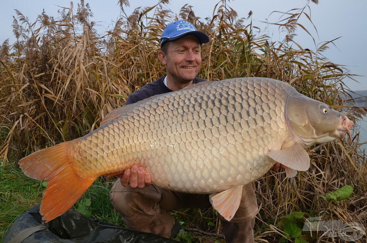 Soha rosszabb kezdést! Ez a 19,94 kg-os ponty volt a második halunk, amely még sekély vízi oldalon került horogra
