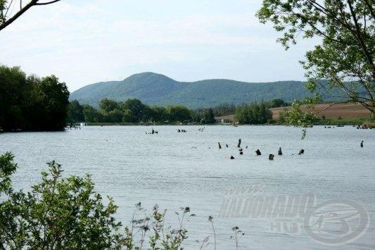 A tó igazán vadregényes, sok bedőlt fa és vízben hagyott tuskó nehezíti a halfogást (forrás: www.haziret.hu)