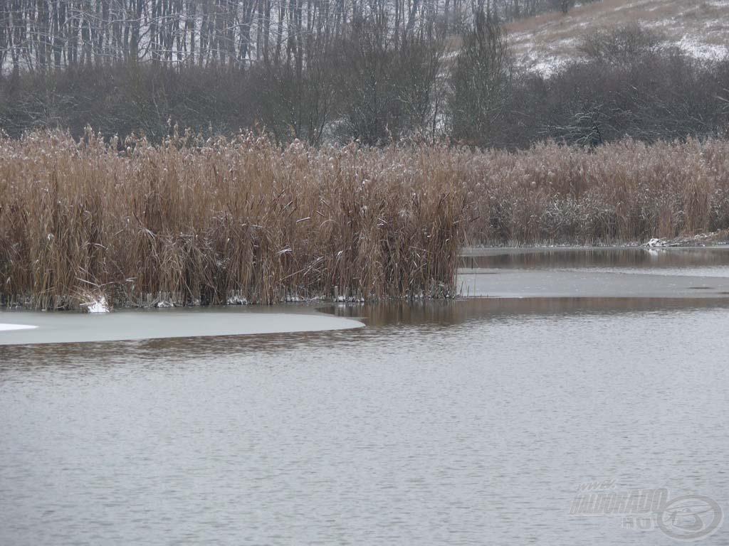 A tó sekélyebb részei már be voltak fagyva