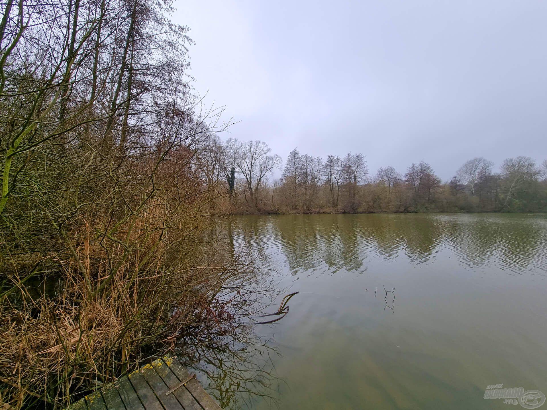 Kiindulópontnak a tó legutolsó helyét választottam. Balra háborítatlan öböl, szemben fákkal és bokrokkal benőtt potenciális haltartó helyek