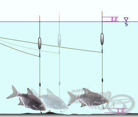 Hiába teszi lehetővé az úszó-jelzőólom rendszer a látványosabb kitolást, ha a hal nem emel eleget