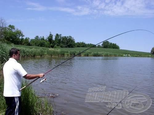 Gábor fáraszt: a match-fenekező büntet. Jókat rohangásznak a halak errefelé - néha a fotó miatt, néha a hal miatt voltunk kénytelenek helyet cserélni